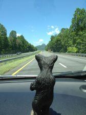 Road Trip Bear